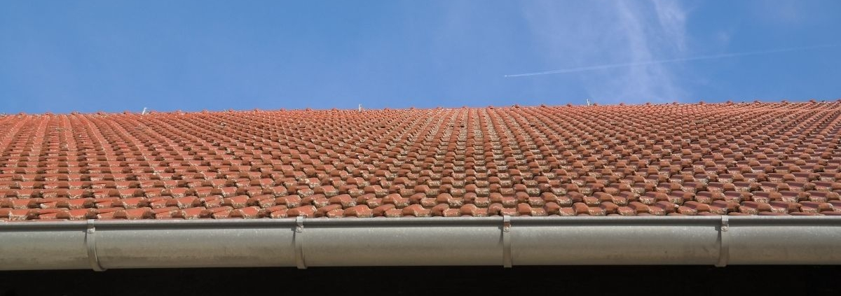 Maintaining your gutter